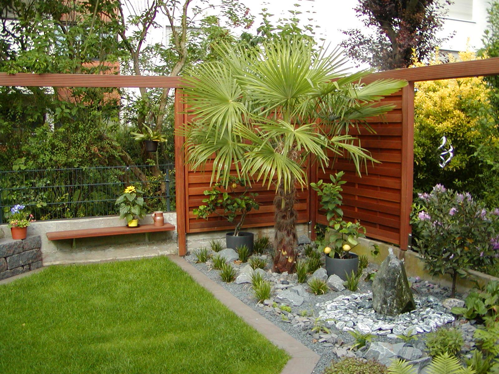 pflanzen in nanopics pflegeleichter vorgarten mit buxbaumkugeln. Black Bedroom Furniture Sets. Home Design Ideas